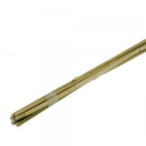 Bamboestok 90 cm - 10 stuks