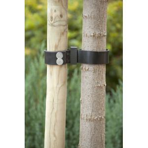 Spijkerboomband 90 cm