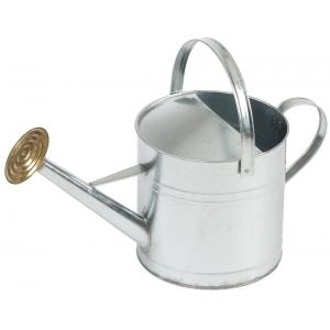Gieter verzinkt 9 liter met sproeikop