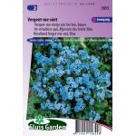 Blauw vergeet-me-nietje van het bos bloemzaden – Vergeet-me-niet