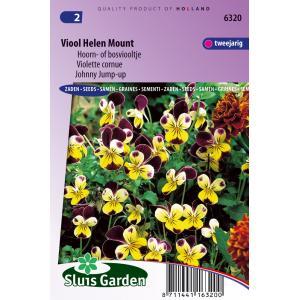 Bosviooltje bloemzaden – Viool Helen Mount