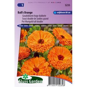 Goudsbloem hoge dubbele bloemzaden - Ball's Orange