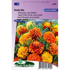 Lage dubbele Afrikaantjes bloemzaden – Bonita Mix