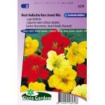 Lage dubbele bloemzaden – Oost-Indische Kers Jewel Mix