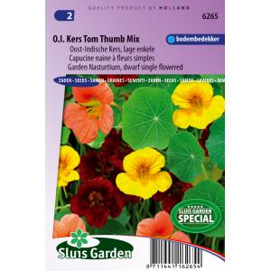 Lage enkele Oost-Indische kers bloemzaden – Oost-Indische kers Tom Thumb mix