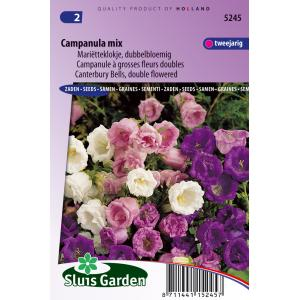 Marietteklokje dubbelbloemig bloemzaden - Campanula Mix