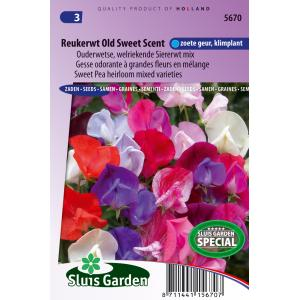 Ouderwetse welriekende siererwt mix bloemzaden – Reukerwt Old Sweet Scent