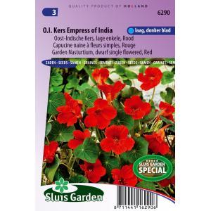 Rode lage enkele Oost-Indische kers bloemzaden – Oost-Indische kers Empress of India
