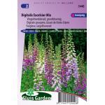 Vingerhoedskruid grootbloemig bloemzaden - Digitalis Excelsior Mix