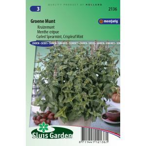 Groene Munt zaden - Kruizemunt