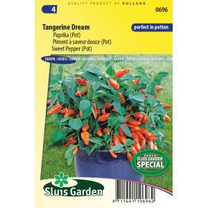 Paprika (pot) zaden - Tangerine Dream