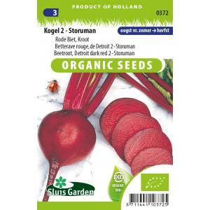 Rode biet biologische zaden - Kogel 2 - Storuman