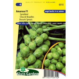 Spruitkool zaden - Amaroso F1